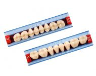 26-DENTI ARTIC POST INF